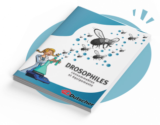 Interactive catalog : Consumables and Drosophila equipment